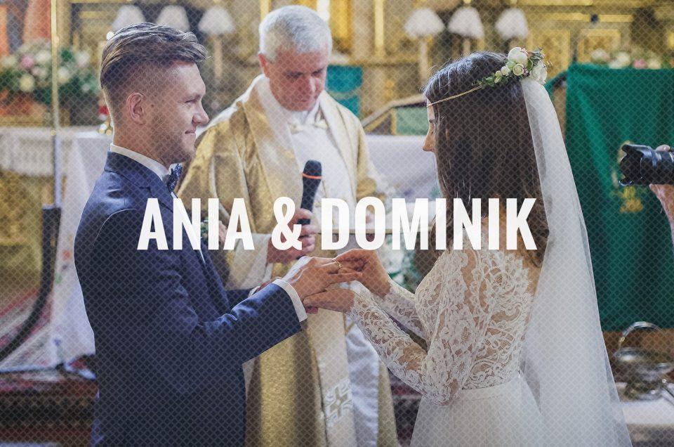 Ania & Dominik
