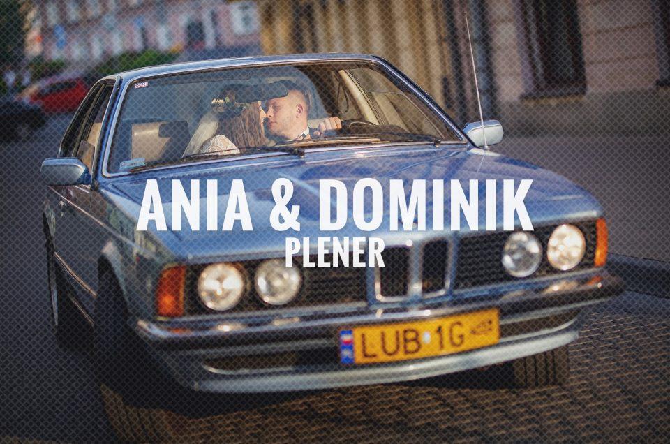 Ania & Dominik / Plener